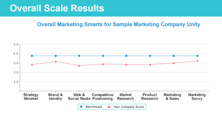 Overall Scales for Marketing Smarts Profile